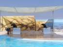 Mediteraneo morski lavovi