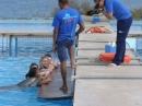 Mediteraneo plivanje sa delfinima